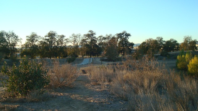 Another shot of the park facing toward Balboa Blvd.