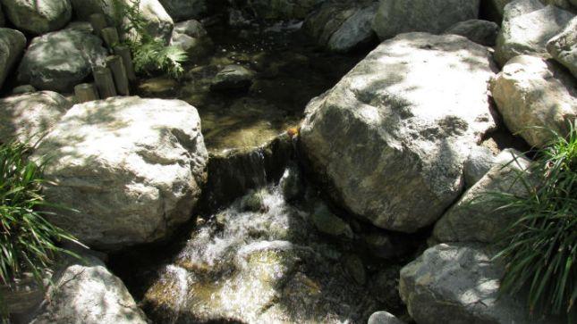 LT X50 Gdn Water