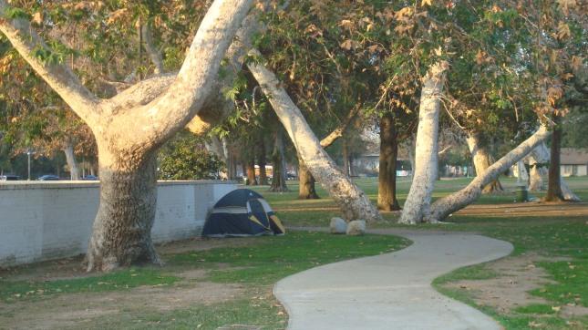 NH 07 Pk Tent