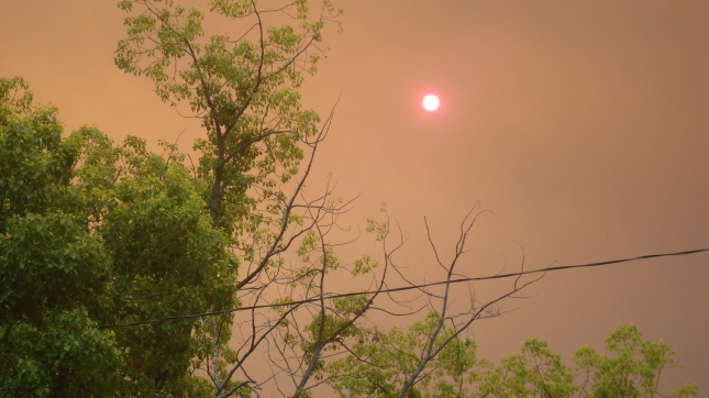 The sun seen through smoke from the Santa Clarita fire.