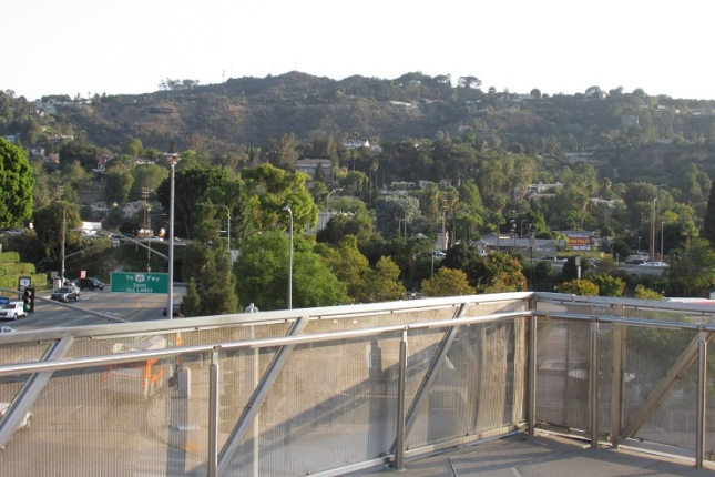 A view of the Hollywood Hills.