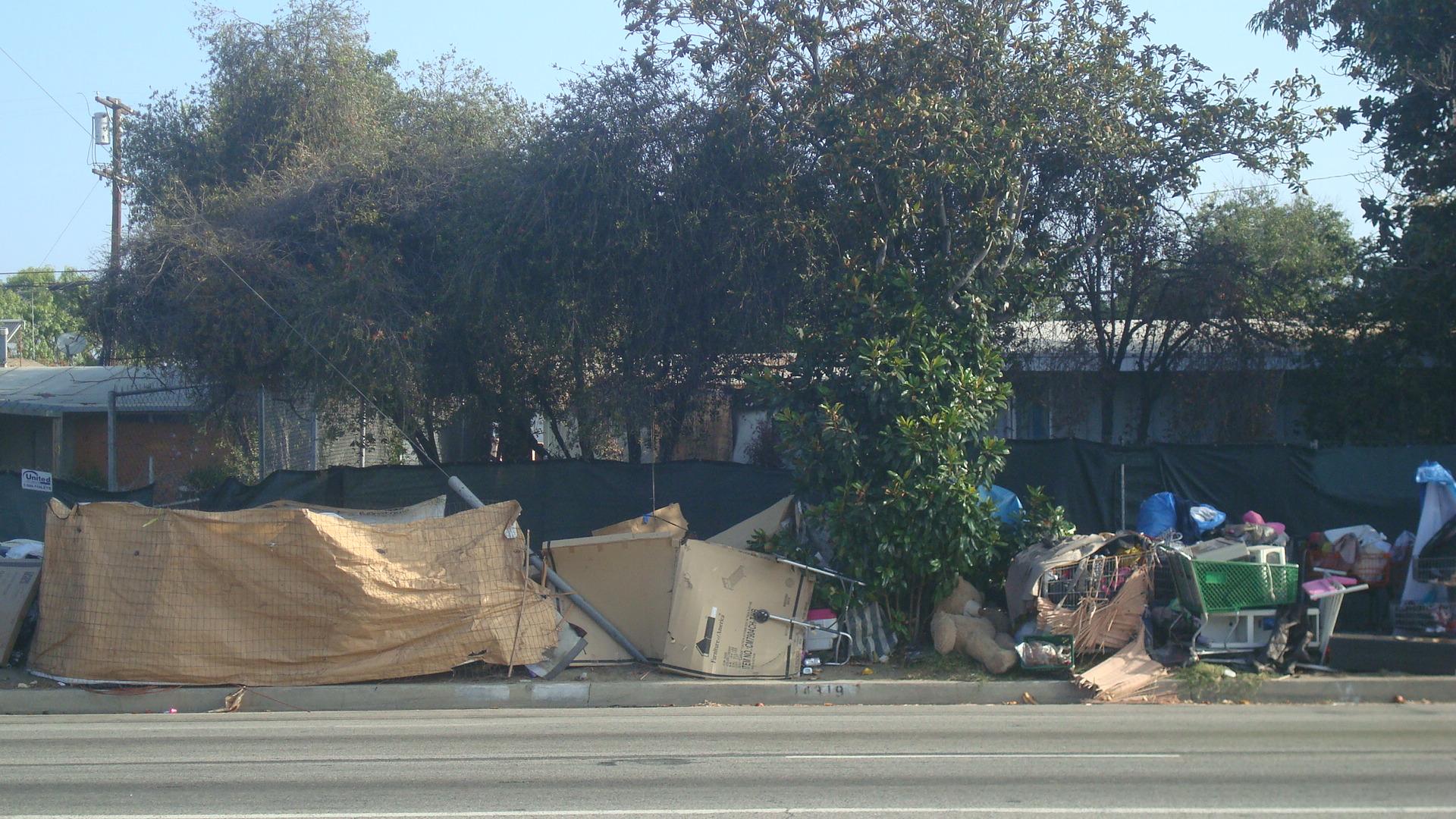 Homeless encampment near Roscoe and Lennox.
