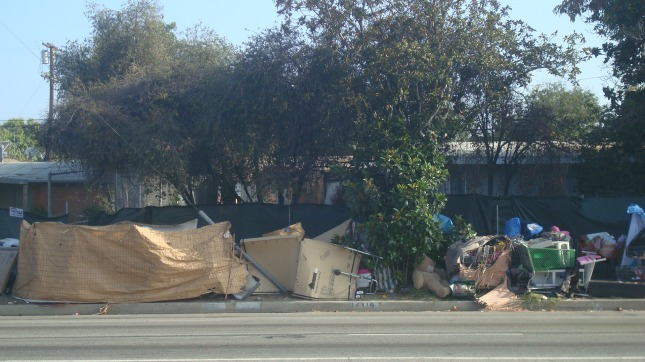 Homeless encampment near Roscoe and Lennox.