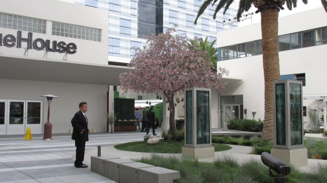 CS 12 Ctyrd Tree 1