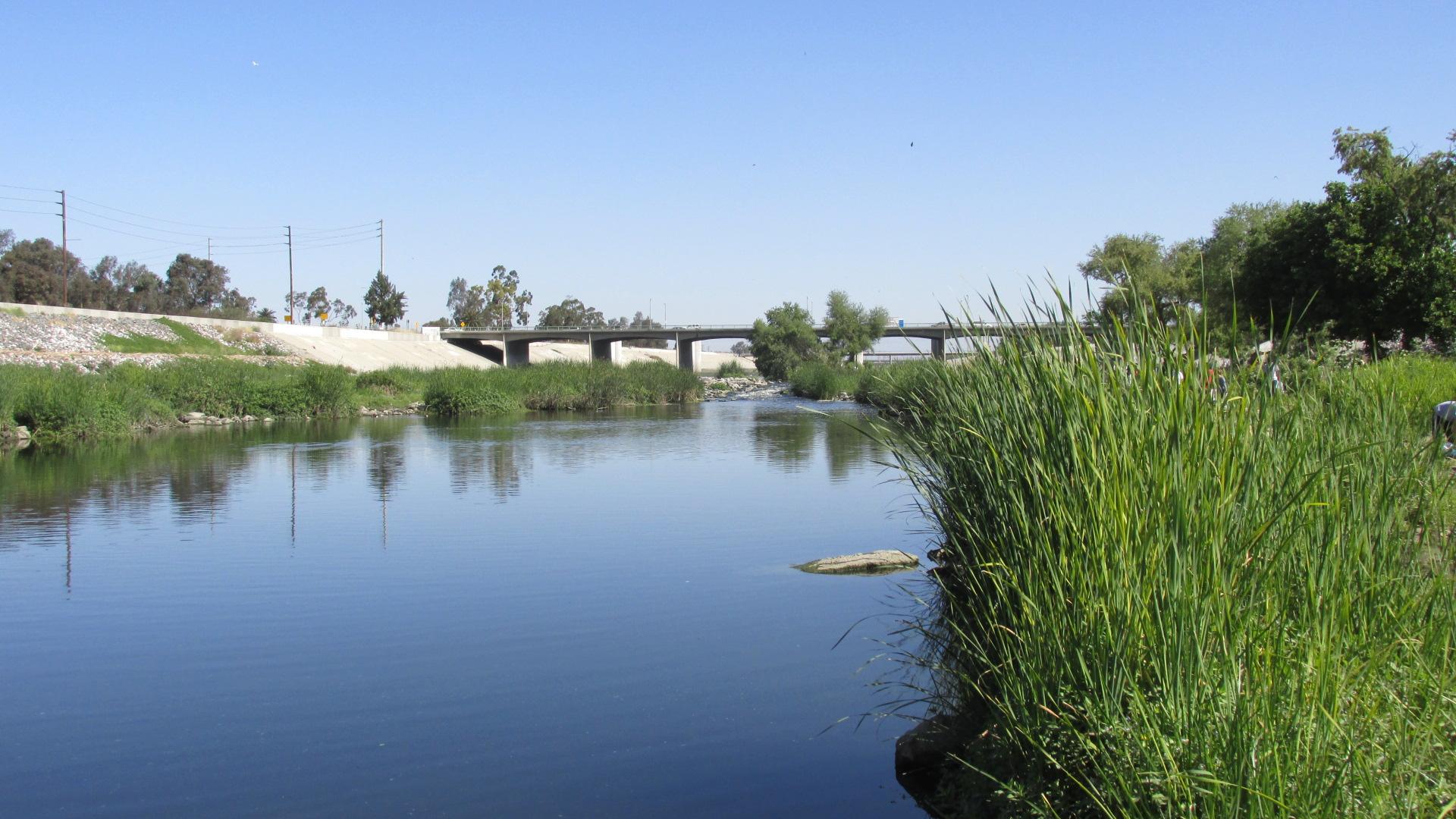 LAR WCU 00 Grass Water 1