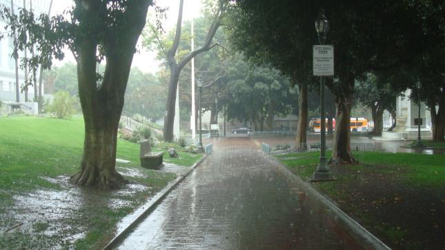 Rain 50 CH Park