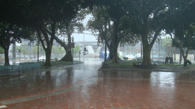 Rain 52 CH Park 2