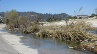 A shot of the river looking toward Griffith Park.